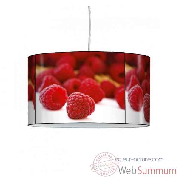 Lampe suspension nature framboises -NA1218SUS